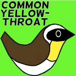 common yellowthroat twitter badge avatar